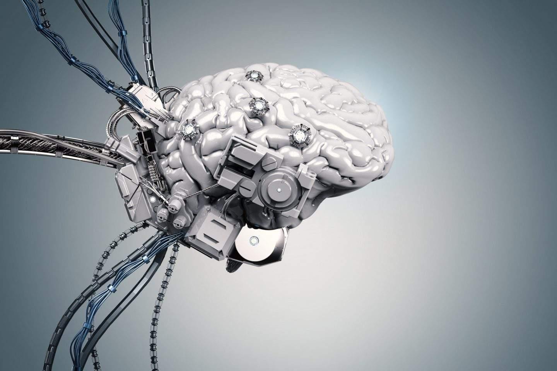 brain-1440x960